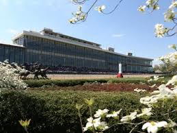 APPLE BLOSSOMS AT OAKLAWN.jpg